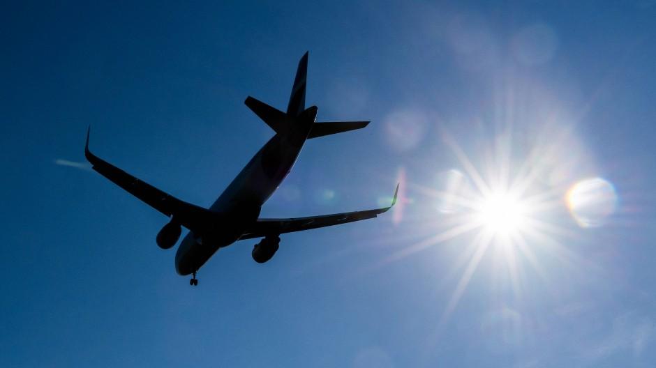 Eingeflogen: Der Kopilot hat das Kunstwerk im Hosenbein an Bord gebracht.