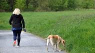 Erleichterungsfläche: Im Maasgrund in Oberursel gehen viele Bürger mit ihren Hunden spazieren. Bei einem Ortstermin gab es Klagen über deren Haufen.