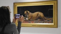 Ein Museum rund um den Hund