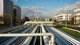 Berlin bremst Großinvestition in Höchst aus