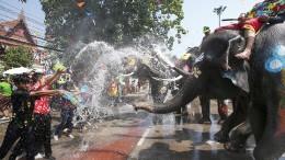 Elefantöse Dusche
