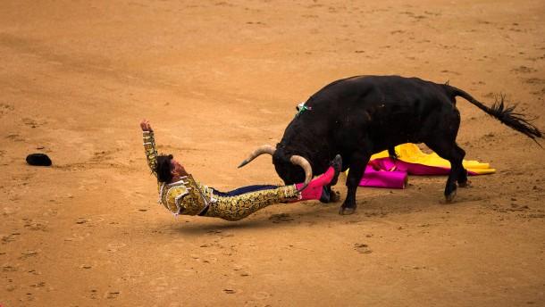 Stiere verletzen drei Matadore schwer