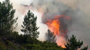 Portugal kämpft weiter gegen Waldbrände