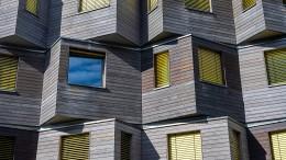 Bauhaus für die Erde