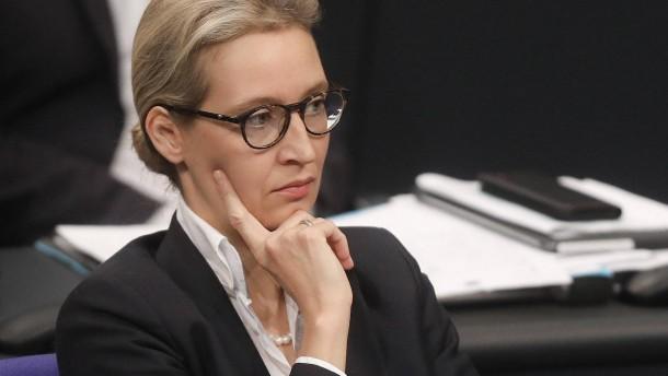 """""""Flügel"""" der AfD und Weidel schließen Pakt"""