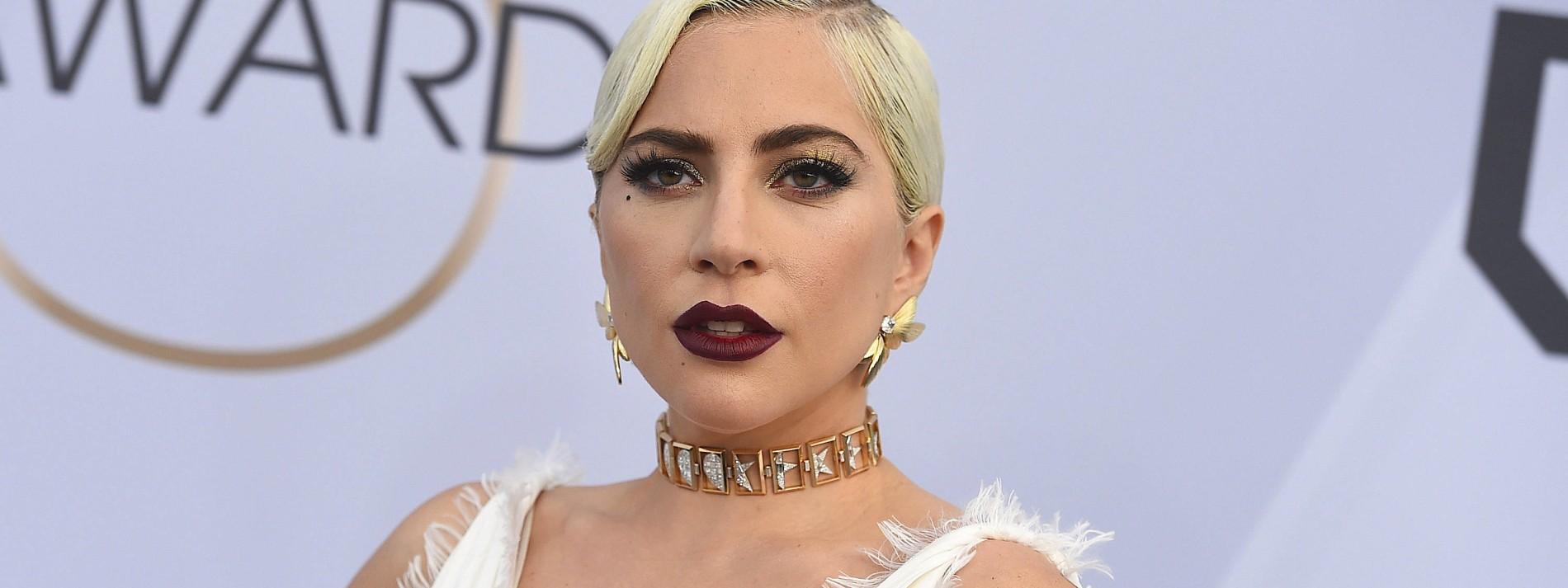 Lady Gaga bietet nach Entführung ihrer Hunde eine halbe Million Dollar Belohnung