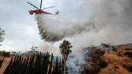 Buschfeuer wüten in Los Angeles