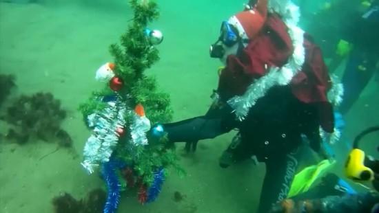 Weihnachtsbaum mit Tiefgang