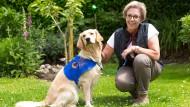Ein Hund als Lebenshilfe