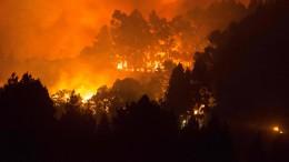 Waldbrand auf Gran Canaria außer Kontrolle