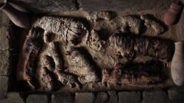 Käfer- und Katzen-Mumien