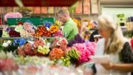 Es blüht und blüht: Blumen haben immer Saison, und darum bietet der Blumengroßmarkt in Frankfurt auch immer ein besonders buntes Bild.