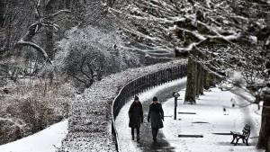 Eine schneefreie Schneise muss sein