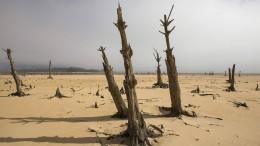 Internationale Klima-Kommission nimmt Arbeit auf