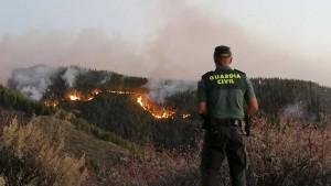 Waldbrände wüten in Urlaubsorten