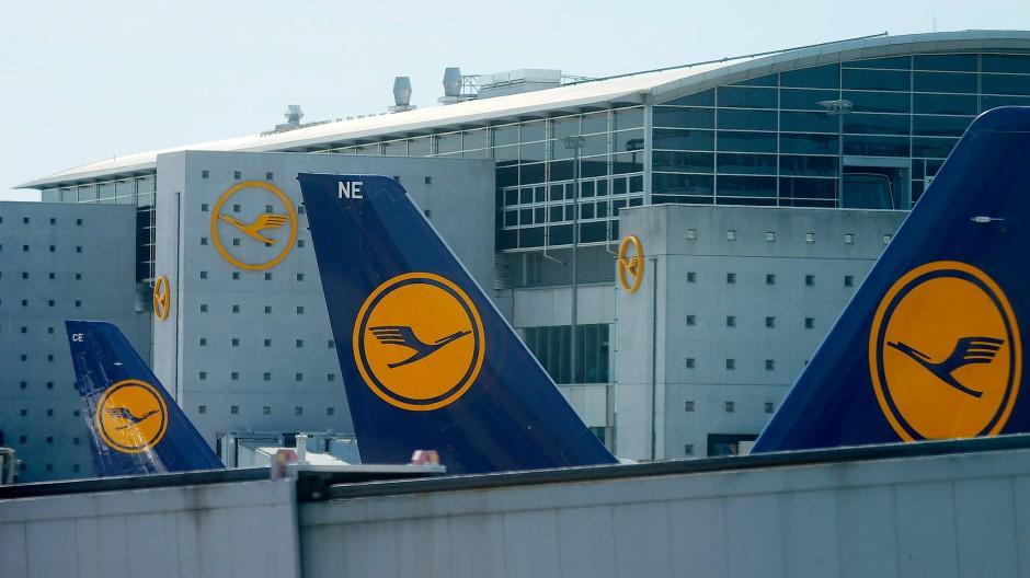 Das Lufthansa-Logo auf mehreren Flugzeugen am Frankfurter Flughafen
