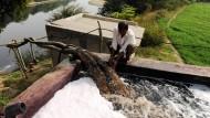 In Indien übernehmen bereits bei 50 Prozent der Bauern Wasserpumpen die Arbeit der Bewässerung der Felder