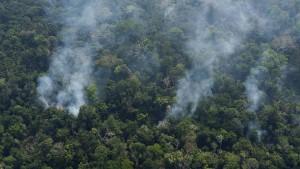 Bolsonaro schickt Armee zur Bekämpfung von Waldbränden
