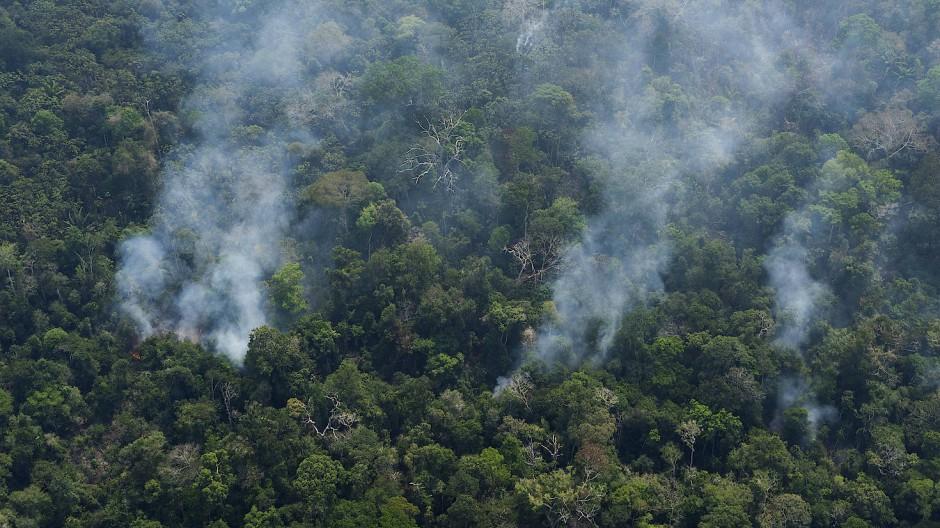 Rauch steigt aus einem Wald in der Nähe von Porto Velho in Brasilien auf.