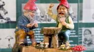 """Fröhliches Miteinander: Die Ausstellung """"Die bunte Welt der Gartenzwerge"""" im Museum in Bad Schwalbach"""