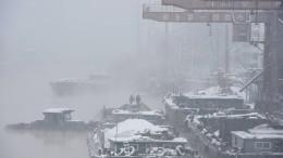 Kohlefrachter im Anlieferungsstau vor Chinas Häfen
