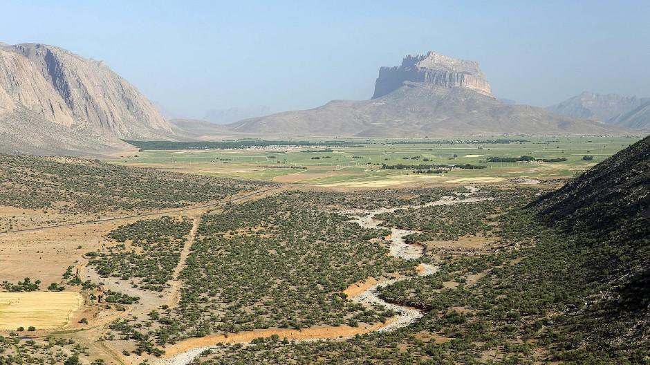 Als Wiege der Landwirtschaft kannte man das Zagros-Gebirge bisher nicht. Aber auch hier machten sich Bauern früh ans Werk, wie Funde aus Iran belegen.