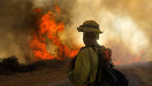 Schon wieder heftige Waldbrände
