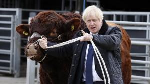 Johnson will Brexit-Verschiebung weiterhin verhindern