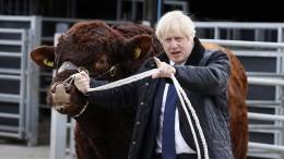 Brexit: Düstere Zeiten für Boris Johnson - Kommentar