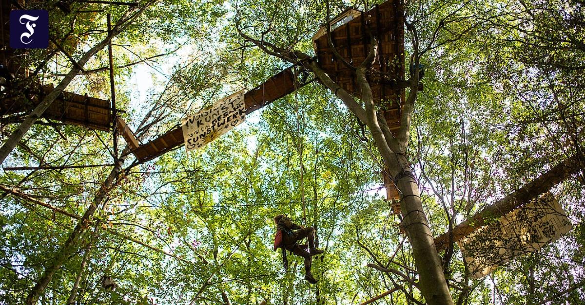 Kommentar zum Hambacher Forst: Fanatiker im Phantasialand