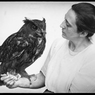Wenn Blicke töten könnten: Magdalena Heinroth mit einem Uhu