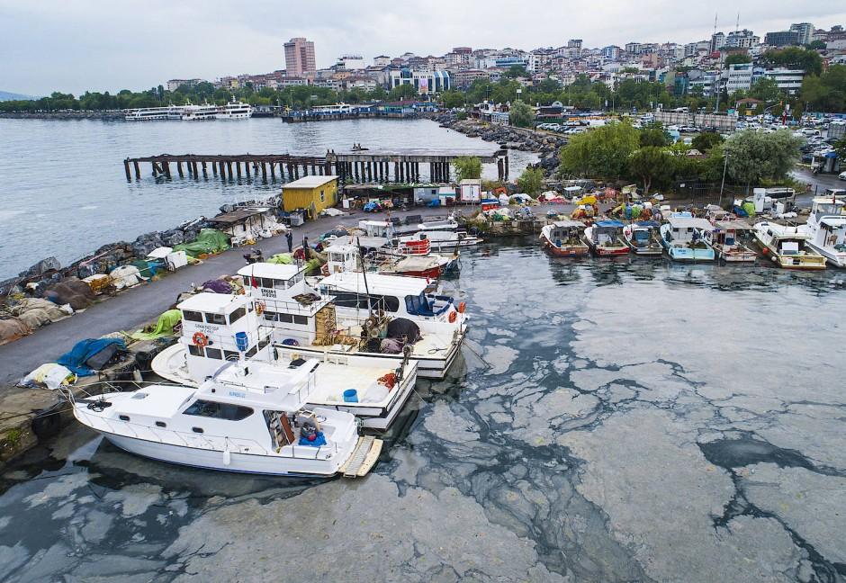 Eine dicke Schicht von Meeresschleim bedeckt das Marmarameer am Fischerhafen von Kartal, auf der asiatischen Seite Istanbuls.