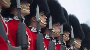 Schutzzäune für britische Palastwachen