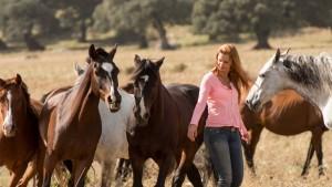 Über die beeindruckende Bindung zwischen Mensch und Pferd