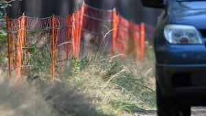Schweinepest-Schutzmaßnahmen laufen auf Hochtouren