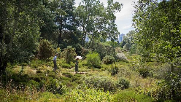 Ein Spaziergang durch den Botanischen Garten