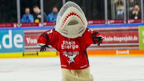 Die große Enttäuschung der Kölner Haie
