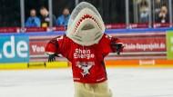 Haie ohne Biss: Immerhin Kölns Maskottchen Sharky macht bei den Rheinländern derzeit noch Laune.