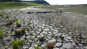 In Kalifornien ist die Dürre vorbei