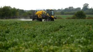 Ein Pestizid schadet seinem Konzern