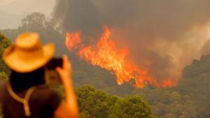 Menschen fliehen vor Waldbrand