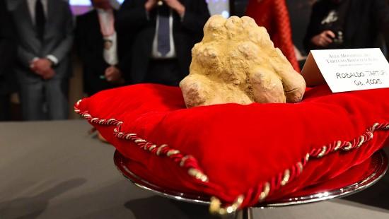 Ein Kilo Trüffel für 120.000 Euro