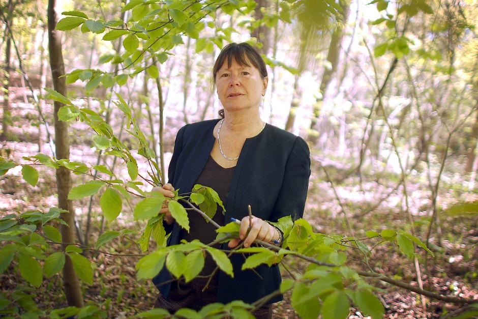 """Für die Mainzer Umweltministerin Ulrike Höfken (Die Grünen) ist Kaliumphosphonat """"aus Umweltsicht unbedenklich und geeignet für den Ökoweinbau""""."""