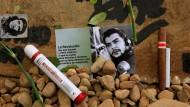 Kubas Vizepräsident ehrt Che Guevara