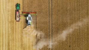 Trockenheit bedroht Ernte und Wälder