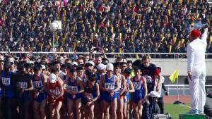 Marathonläufer aus aller Welt starten in Pjöngjang