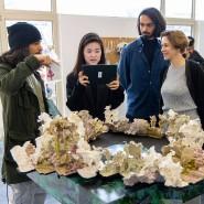 Arbeiten der Studenten in der Städelschule - derzeit studieren dort Architekten aus 19 Ländern.