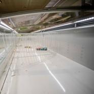 Leergehamstert: Diese Tiefkühltruhe in einem Berliner Supermarkt. Ob ambitionierte Hamster über ähnliche Geräte für zu Hause nachdenken?