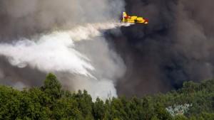 Behörden korrigieren Angaben über Flugzeug-Absturz