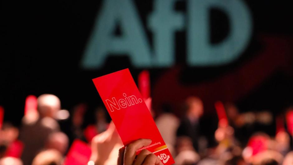 Delegierte beim Europawahltreffen der Alternative für Deutschland in Magdeburg